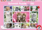 Kittens - Puzzel (100)