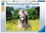 Paard tussen de bloemen - Puzzel (500)