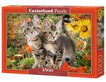 Kitten Buddies - Puzzel (1500)