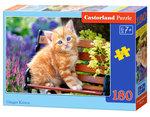 Ginger Kitten (180)