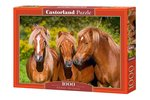 Horse Friends - Puzzel (1000)