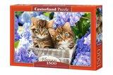 Cute Kittens - Puzzel (1500)