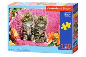 Kittens in de Tuinstoel (120)