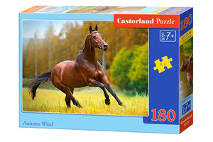 Paard (180)