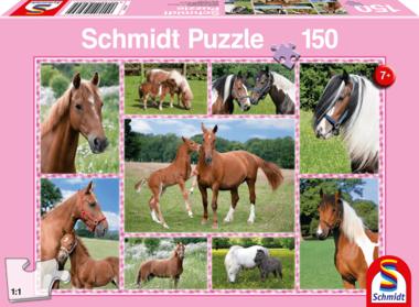 Paardendromen - Puzzel (150)