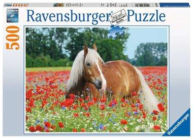 Paard tussen de klaprozen - Puzzel (500)