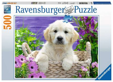 Schattige Golden Retriever - Puzzel (500)