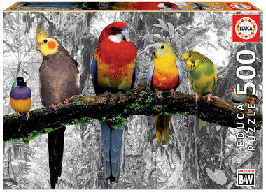 Birds on the Jungle - Puzzel (500)
