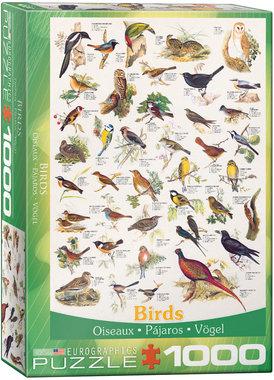 [ZWAAR BESCHADIGD] Birds - Puzzel (1000)