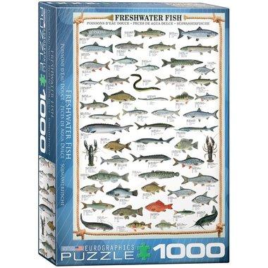 Freshwater Fish - Puzzel (1000)