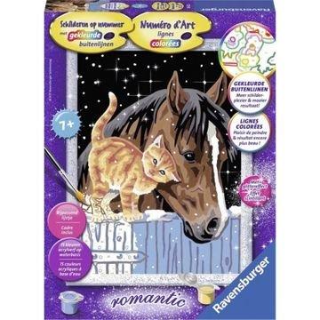 Schilderen op nummer: Veulen met katje