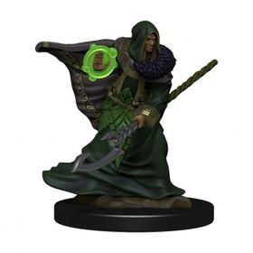 D&D Icons of the Realms: Elf Druid Male (Premium Pre-Painted Miniature)