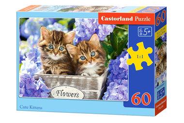 Cute Kittens (60)