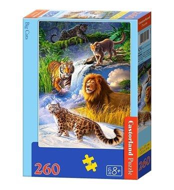 Big Cats (260)