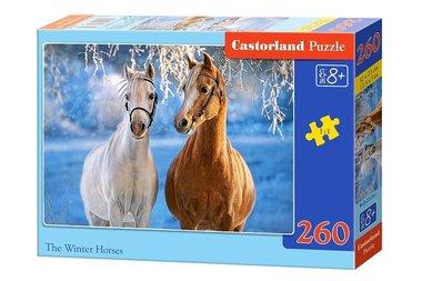 Winter Horses (260)