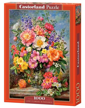 June Flowers in Radiance - Puzzel (1000)