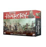 Warhammer: Age of Sigmar - Warcry (Splintered Fang)