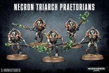 Warhammer 40,000 - Necron Triarch Praetorians